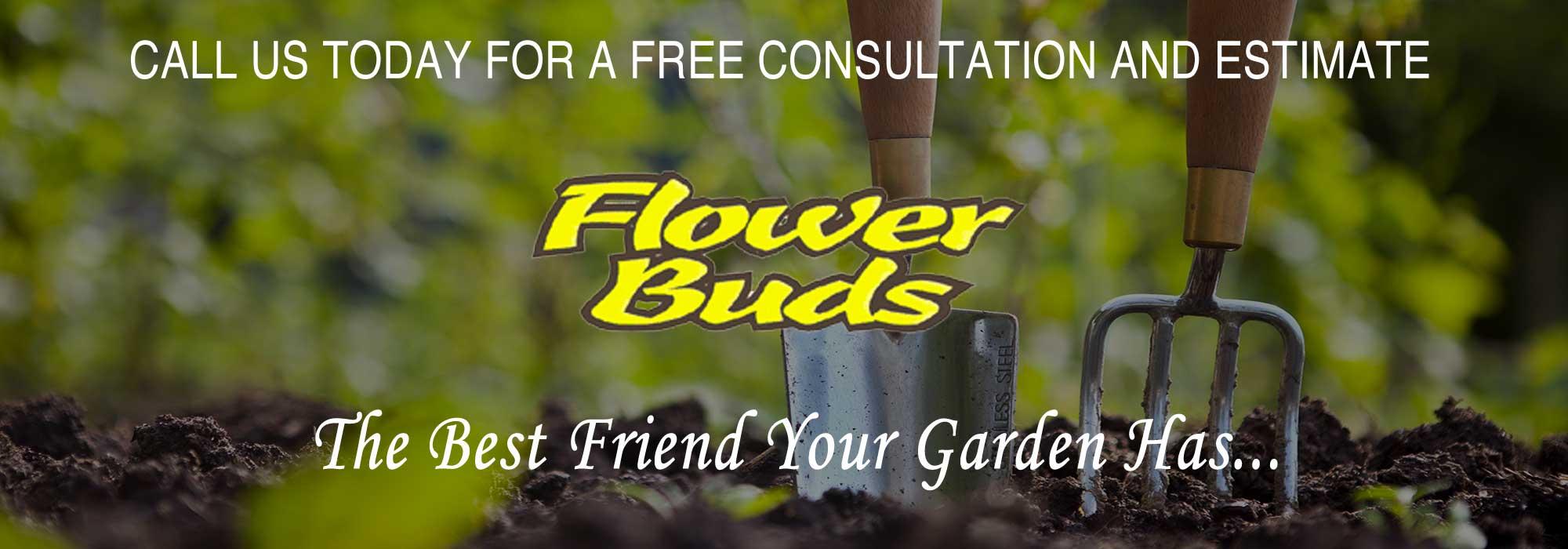 Flower Buds Professional Gardening
